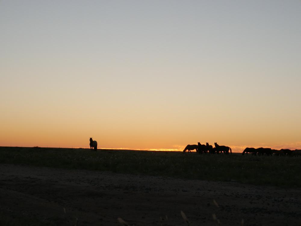 Sunset Inner Mongolia