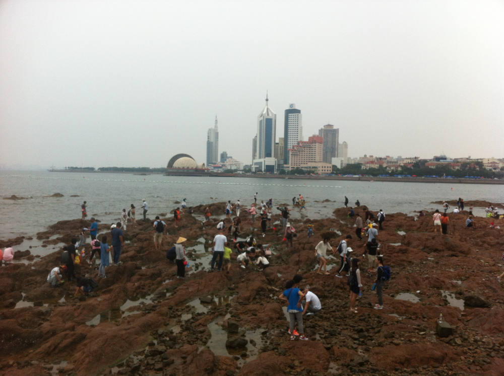 People collecting something from the stones in Qingdao